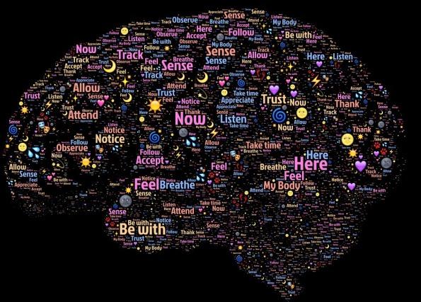 Aware Awake Mind Conscious Mindfulness Brain