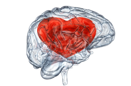 Enamoramiento-Amor-Cerebro-Euforia-Droga-Pareja-Romance
